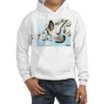 Flying Homer Pigeons Hooded Sweatshirt