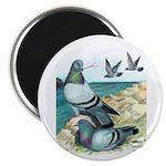 """Rock Doves 2.25"""" Magnet (10 pack)"""
