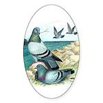 Rock Doves Oval Sticker