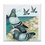 Rock Doves Tile Coaster