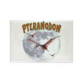 Pteranodon Rectangle Magnet (10 pack)