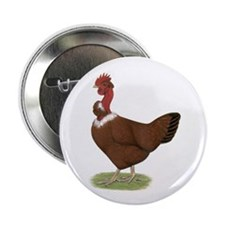 "Naked Neck Hen 2.25"" Button"