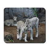 Mousepad-Tigers