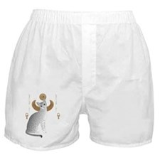 Funny Egyptian cat Boxer Shorts