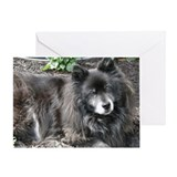 Black Chow Mix Greeting Card