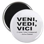 Veni Vedi Vici Caesar Quote Magnet