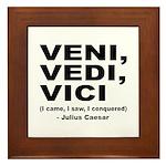 Veni Vedi Vici Caesar Quote Framed Tile