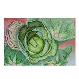 Fugue of Cabbages postcards