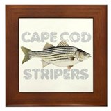 Cape Cod Stripers Framed Tile