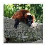 Tile Coaster-Lemur