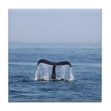 Tile Coaster-Whale (Humpback)