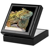 Iguana Photo Keepsake Box
