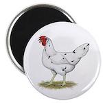 California White Hen Magnet
