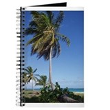 Cool Punta cana beach Journal