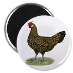 """Hamburg Golden Spangled Hen 2.25"""" Magnet (10"""