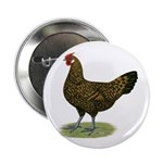 "Hamburg Golden Spangled Hen 2.25"" Button (100"