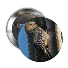 Woodpecker Button