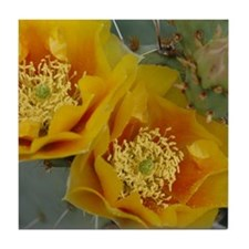 Yellow Cactus Flower (square) Tile Coaster