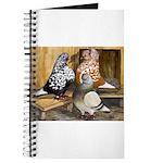 Domestic Flight Pigeons Journal