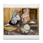 Domestic Flight Pigeons Tile Coaster