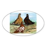 Shortfaced Tumbler Pigeons Oval Sticker