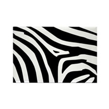 Zebra Rectangle Magnet (10 pack)