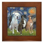 Starry / 3 Boxers Framed Tile