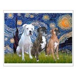 Starry / 3 Boxers Small Poster