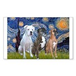 Starry / 3 Boxers Sticker (Rectangle 10 pk)