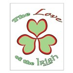 Love of the Irish Small Poster