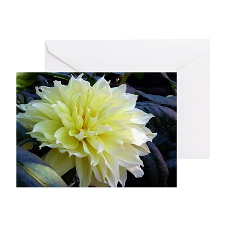 the Yellow Dahlia Greeting Cards (Pk of 10)