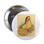 Muffed Tumbler Pigeon Button