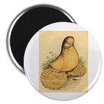 Muffed Tumbler Pigeon Magnet