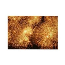 Fireworks Rectangle Magnet