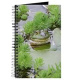 Green Frog/Bullfrog Journal