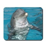 Unique Dolphins Mousepad