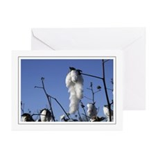 Cotton Greeting Cards (Pk of 10)