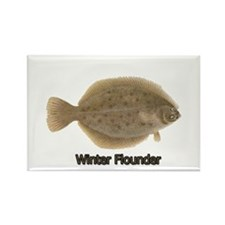 Winter Flounder Rectangle Magnet