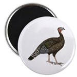 Turkey Standard Bronze Hen Magnet