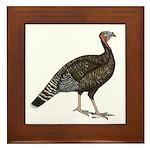 Turkey Standard Bronze Hen Framed Tile