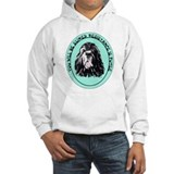 Resistance is Futile Jumper Hoody