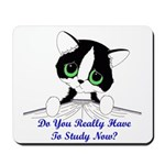 Do You Really Have To Study N Mousepad