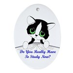 Do You Really Have To Study N Ornament (Oval)