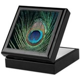 Dark Peacock Feather Keepsake Box