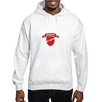 DENMARK SOCCER Hooded Sweatshirt
