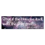 What if the Universe... - Bumper Sticker