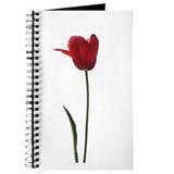 Red Tulip Faux Pastel Journal