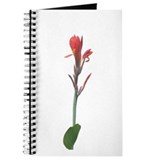 Red Canna Lily Faux Pastel Journal