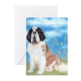 Saint bernard 10 Pack