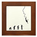 Bungee Evolution Framed Tile